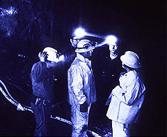 Bütün madenciler kurtulabilirdi!