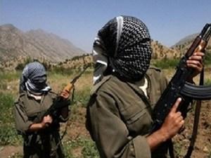 Şırnak'ta 2 terörüst teslim oldu