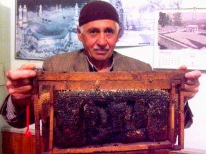 Arılar Allah'ın adını işledi!