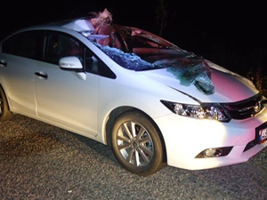 Araba ata çarptı