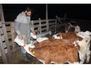Üniversiteyi bitirip çiftçilik yaparak kendi işinin patronu oldu