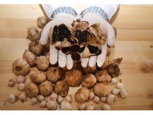 Şifa deposu siyah sarımsak tane ile satılıyor
