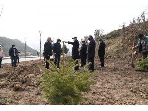 Dursunbey'de 8 Bin 500 Fidan Toprakla Buluştu