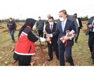 Şanlıurfa'da 8 Mart ağaçlandırma etkinliği