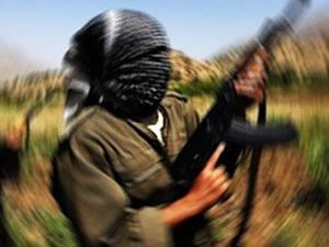 1 PKK üyesi teslim oldu