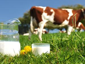 Süt çocuklara neler yapıyor ?