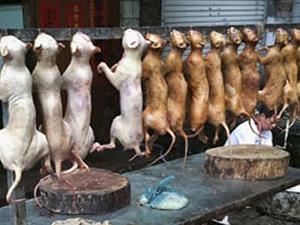 Çinde büyük vahşet