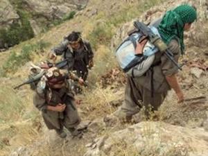 Terör örgütü PKK'dan 2 kişi teslim oldu!