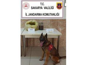 Uyuşturucu operasyonunda 6 buçuk kilo bonzai, 11 gram metamfetamin ele geçirildi