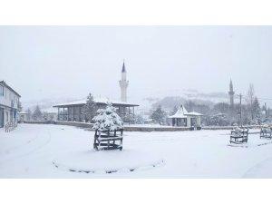 Ordu'nun bin 500 rakımlı yaylasında kar manzaraları