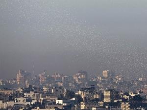 Gazze'de memur maaşı profestosu