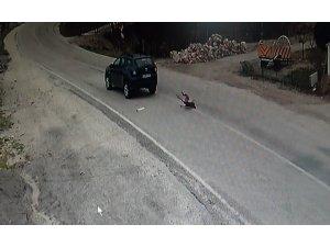 Köpeğe çarparak ölümüne neden olan sürücü kameraya yansıdı