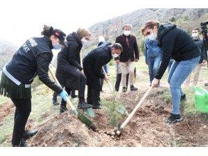 """Tokat'ta, """"En İyi Narkotik Polisi Anne"""" Projesi kapsamında fidanlar toprakla buluştu"""