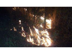 Muğla'daki orman yangınlarını söndürme çalışmaları devam ediyor