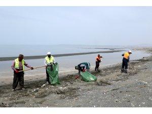 Van Gölü sahilinde temizlik çalışması