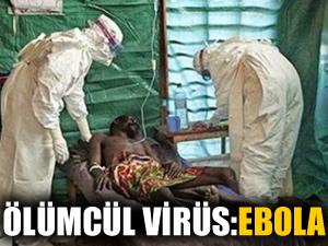 11 ülke, Ebola virüsü için acil toplanıyor