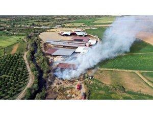 Kuyucak'taki yangında bin tondan fazla saman zarar gördü
