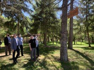 Çorum'da parktaki ağaçlara Yunus Emre'nin sözleri asıldı