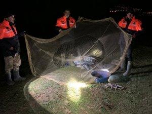 Avlanma yasağında 2 bin 500 inci kefali ele geçirildi