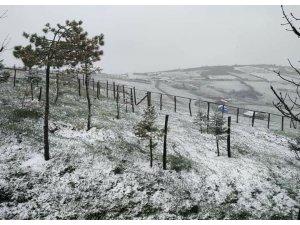 Ordu'nun yüksek kesimlerin 'kar' sürprizi