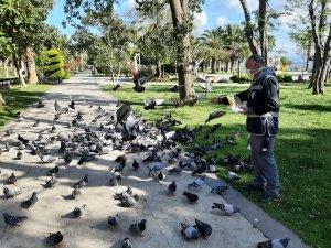 Sinop'ta aç kalan güvercinleri polisler besledi