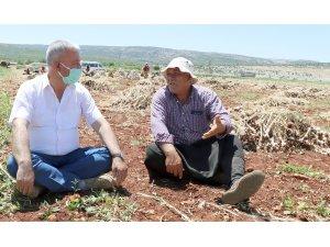 Çiftçiler gününde tarlada çalışan çiftçilerle buluştu