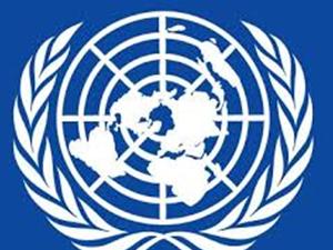 BM İnsan Hakları Yüksek Komiseri Navi Pillay'dan  Filistin açıklaması