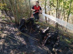 Akçakoca'da 1 dönümlük alan yandı
