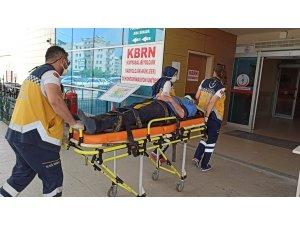 Asma ağacından düşen çiftçi yaralandı