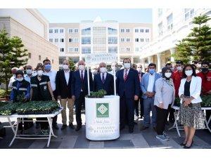 Osmaniye'de vatandaşlara 400 bin adet fide desteği