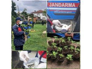 Jandarma ekipleri Sakarya'da suça geçit vermiyor