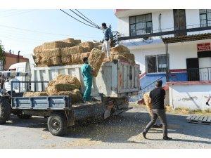 Tarsus'ta hasat edilen 30 ton buğday ve saman üreticilere ücretsiz dağıtıldı