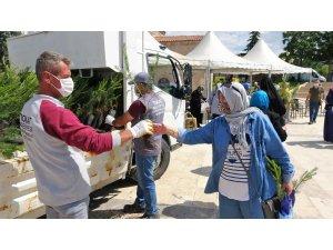 Tokat'ta 10 bin fidan dağıtıldı