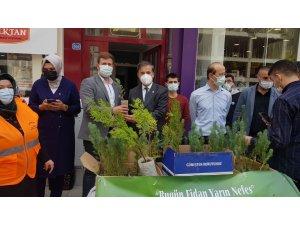 AK Parti, Dünya Çevre Günü'nde Karabük'te fidan dağıttı