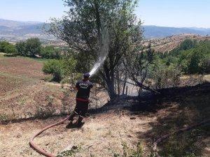 Bingöl'de örtü yangınları söndürüldü
