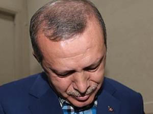 İşte Erdoğan'ın kedili fotoğrafı