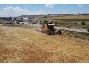 Sivas işlenen tarım alanında 4'üncü sırada