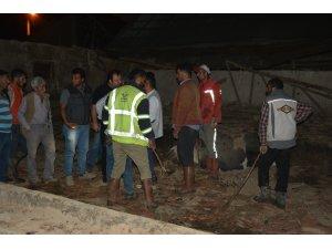 20 büyükbaş hayvan yağış nedeniyle çöken çatının altında kaldı