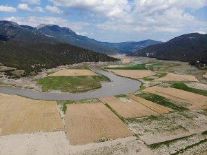 Bir zaman balık tutulan baraj şimdi tarım arazisine döndü
