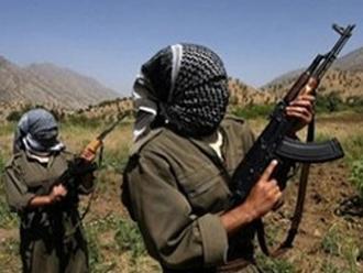 Şırnak'ta 15 PKK'lı teslim oldu!