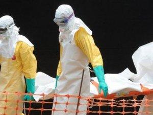 Ebola virüsü nedir?
