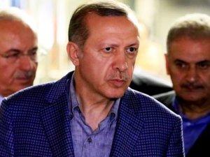 """Erdoğan Çölaşan'ın """"Anırmasını"""" bekliyor!"""