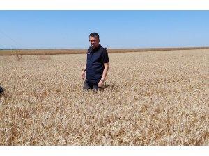 """Bakan Pakdemirli: """"Kanola tohumunun bundan sonra yüzde 50'sini Bakanlık olarak biz karşılayacağız"""""""