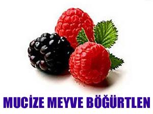 Mucize meyve böğürtlenin faydaları!