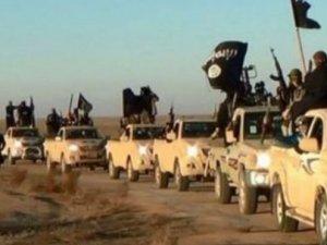 Yakalanan IŞİD militanlarından kan donduran itiraf!