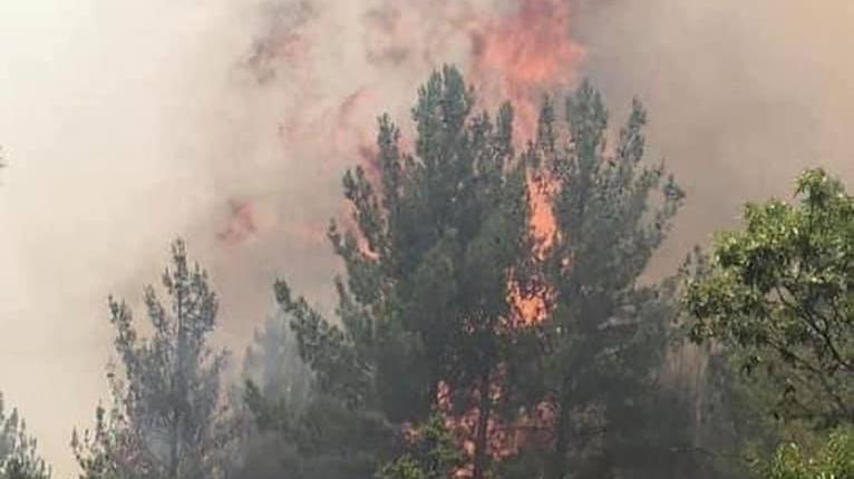 3 gündür alev alev yanıyor: Söndürülemiyor