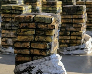 Rotterdam Limanı'nda kömür süsü verilen 41.4 milyon dolarlık uyuşturucu ele geçirildi