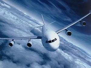 Havada panik!  Uçak bir türlü inemedi...