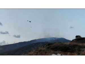 Avşa Adası'nda makilik alanda çıkan yangın söndürüldü
