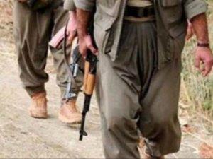 Van'da 1 PKK'lı teslim oldu